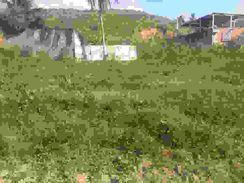 Inacreditável Terreno no São Caetano
