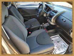 Honda Fit 2008 Flex Impecavel