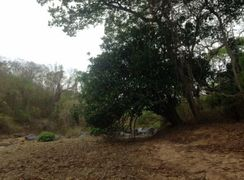 Fazenda Laranjeiras - Norte de Minas Gerais