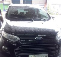 Ford Ecosport Freestyle 1.6 16V (Flex) 2013