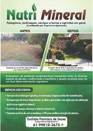 Em Brasilia, Nutre Mineral Paisagismo, Jardinagem, Serviços Urbanos e