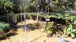 Vendo ou Troco Lote Condomínio Lago dos Cisnes