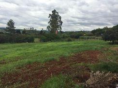 Vende-Se Terreno na Fazenda Nata