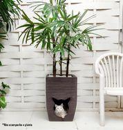 1 Vaso de Planta Casinha Cama Gato Pet Cat Dog 60X40