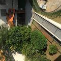Apartamento com 2 Dorms em São Paulo   Vila Santa Catarina por 310 Mil para Comprar