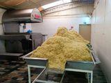 Batatas Fritas, Fábrica de Lucros