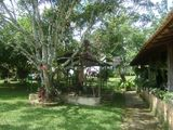 Chácara em Divinópolis a 5 Km do Centro