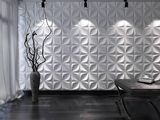 Dry Wall Forro
