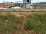 Lote 175 M²