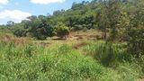 Vendo Terreno de 5,5 Alqueires com Escritura Definitiva em Itaipé